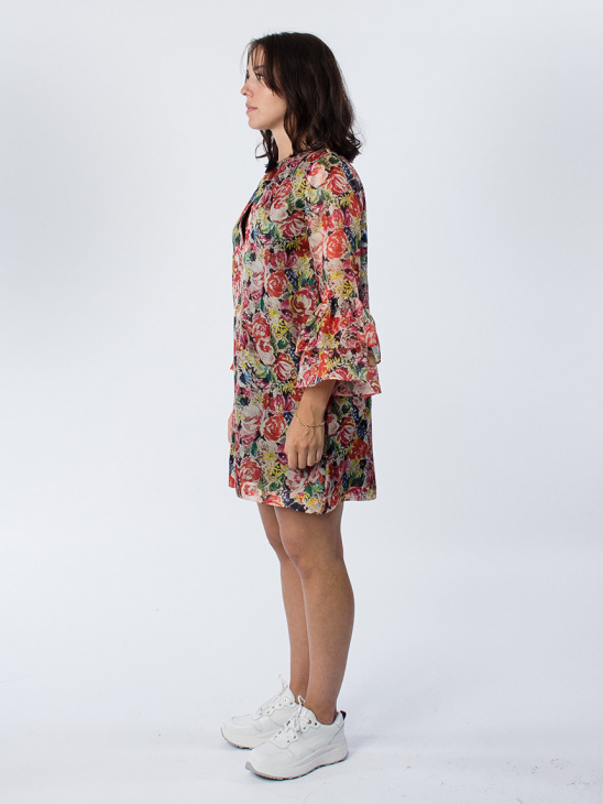 Seneca Silk Multicolour Dress
